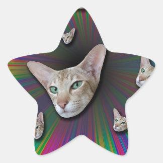 Psychedelic Tye Die Cat Star Sticker