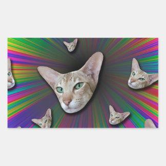 Psychedelic Tye Die Cat Sticker