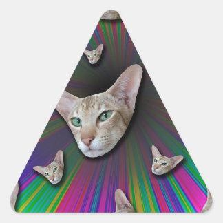 Psychedelic Tye Die Cat Triangle Sticker