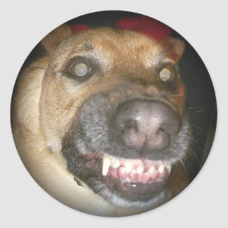 Psycho Dog Fade to Black Round Stickers