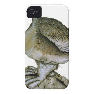 Ptarmigan bird, tony fernandes iPhone 4 Case-Mate cases