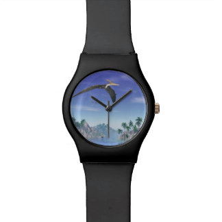 Pteranodon birds  - 3D render Watch