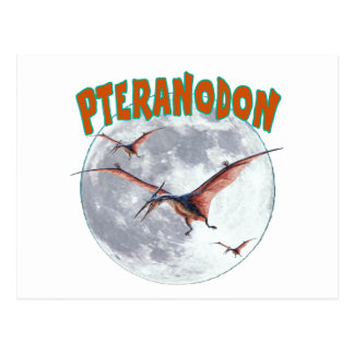 Pteranodon dinosaur postcard