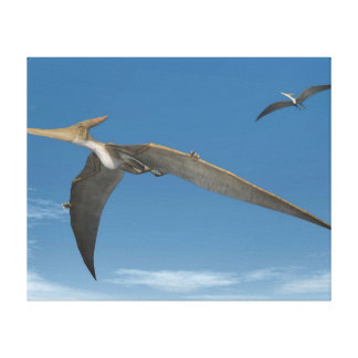 Pteranodon dinosaurs flying - 3D render Canvas Print