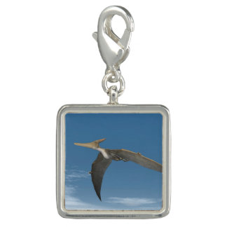 Pteranodon dinosaurs flying - 3D render Photo Charm
