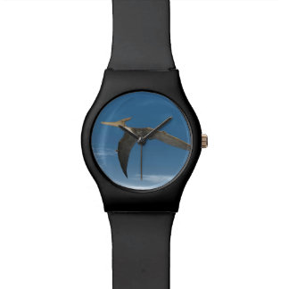 Pteranodon dinosaurs flying - 3D render Watch