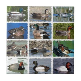 Puddle Ducks Logo Tile