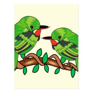 Puerto Rican bird love art Postcard
