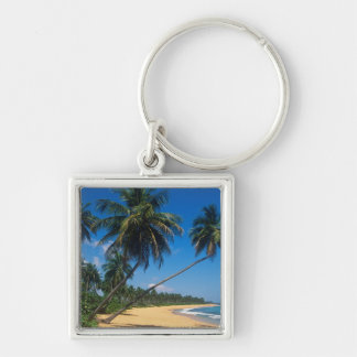 Puerto Rico, Isla Verde, palm trees. Silver-Colored Square Keychain