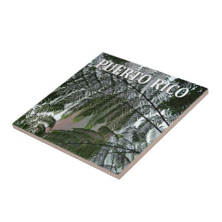 Puerto Rico Rainforest Tower Photo Souvenir Tile