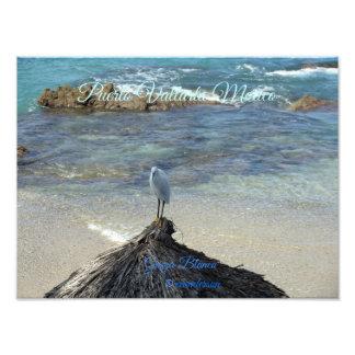 Puerto Vallarta Mexico-Garza Blanca Photo Print