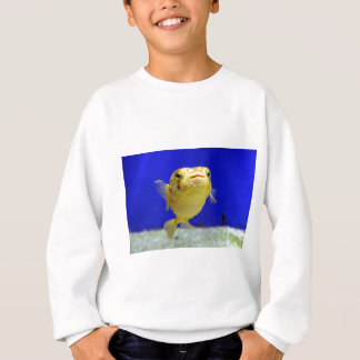 Puffer Fish Sweatshirt