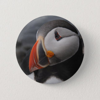 Puffin 2 Inch Round Button