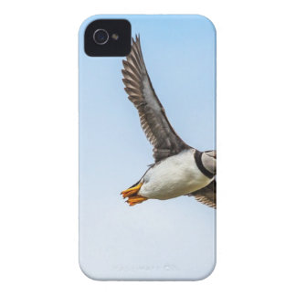 Puffin Bird Sea Flight Wildlife Fly Feather iPhone 4 Case-Mate Cases
