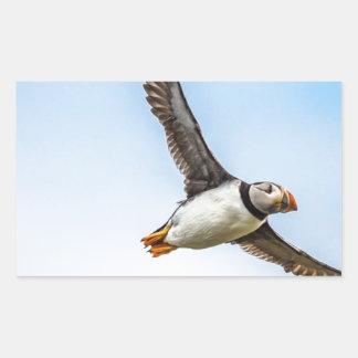 Puffin Bird Sea Flight Wildlife Fly Feather Sticker