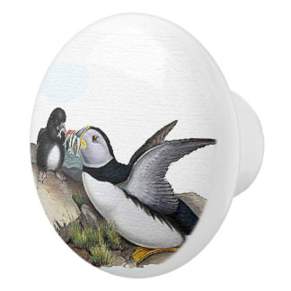 Puffin Birds Baby Wildlife Animals Family Knob