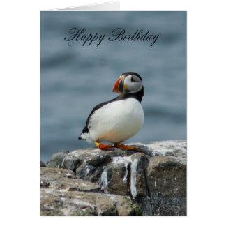 Puffin Birthday Greeting Card