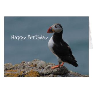Puffin Birthday Greetings Card