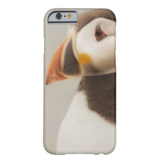 Puffin iPhone case