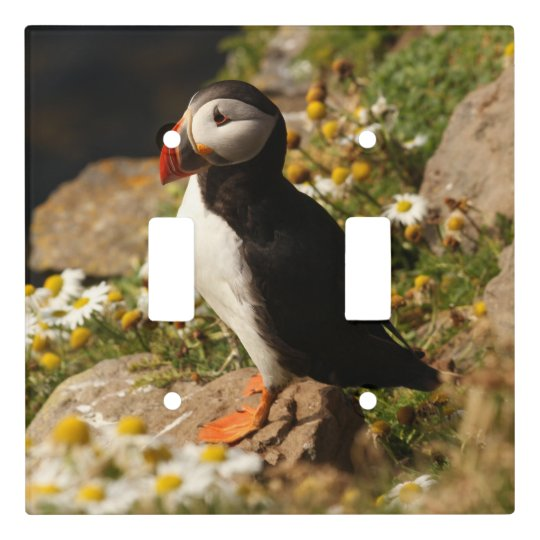 Puffin Light Switch Cover