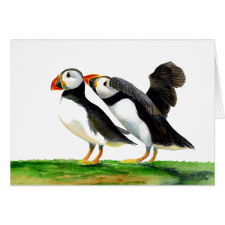 Puffins Seabirds in Watercolour Paints Artwork Card
