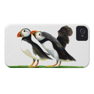 Puffins Seabirds in Watercolour Paints Artwork iPhone 4 Cover