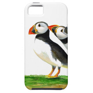 Puffins Seabirds in Watercolour Paints Artwork iPhone 5 Cover