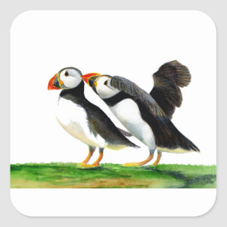 Puffins Seabirds in Watercolour Paints Artwork Square Sticker