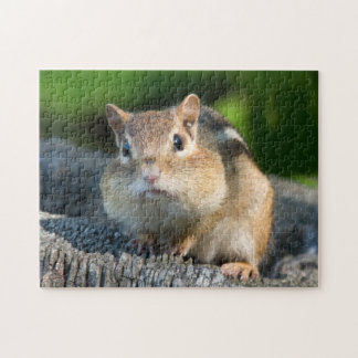 Puffy Cheeked Chipmunk Jigsaw Puzzle