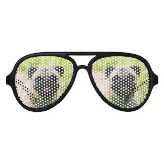 pug-13 aviator sunglasses
