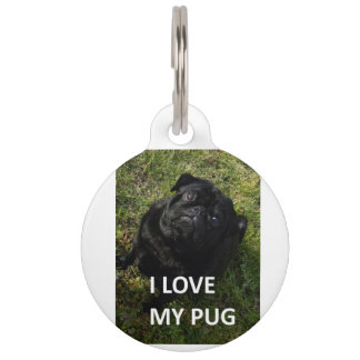 pug black love w pic pet tag