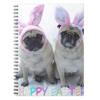 Pug bunny's notebook