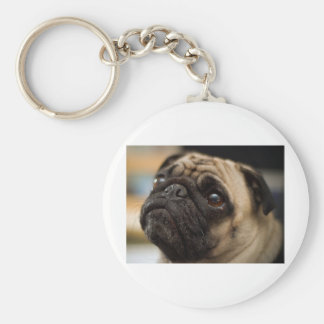 Pug Covers Basic Round Button Keychain