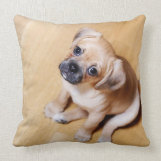 Pug Cross Cavalier King Charles Spaniel Throw Pillow
