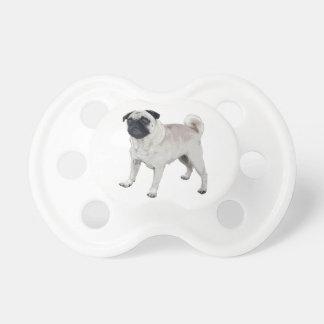 Pug cutie pacifier