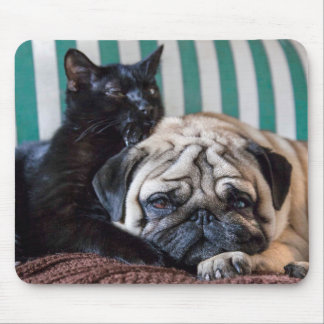 Pug Dog and Black Cat Sleeping Together Mouse Pad