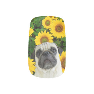 Pug dog in sunflowers minx nail art