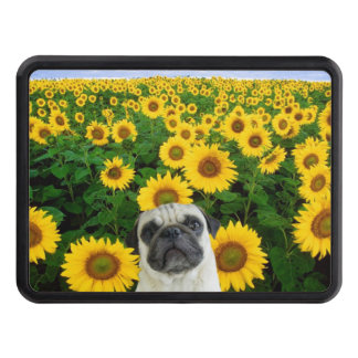 Pug dog in sunflowers trailer hitch cover