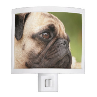 Pug Dog Nite Light
