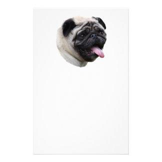 Pug dog photo portrait flyer