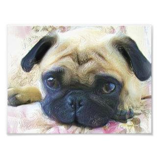 Pug dog photo print
