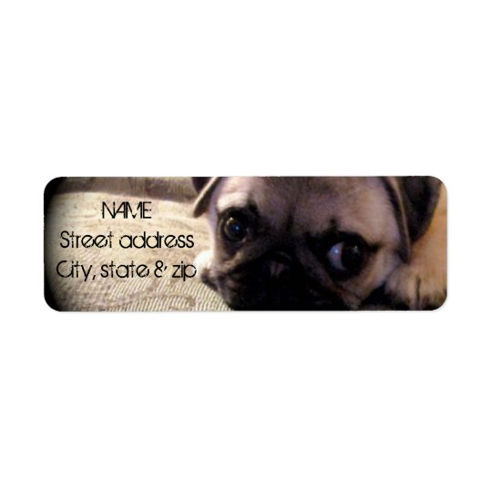 Pug Dog Return Address Label