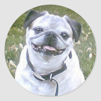 Pug Dog Sticker