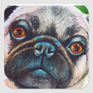 Pug Face Close up Square Sticker