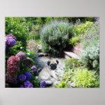 Pug Garden Print