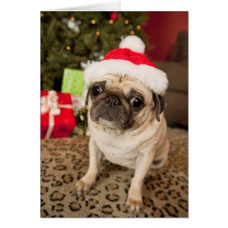 Pug in Santa Claus Hat sitting on carpet Card
