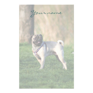 Pug in the park stationary customized stationery