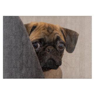 Pug peering around chair cutting board
