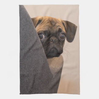 Pug peering around chair kitchen towel
