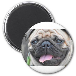 Pug Pet Dog Magnet